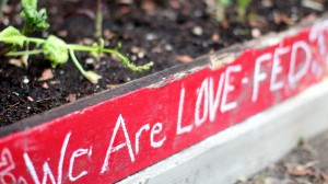 love-fed.com garden we are love-fed