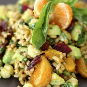 sprouted wheatberry salad raw