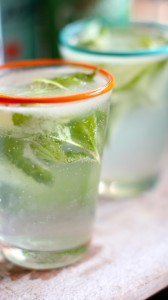 virgin coconut mojito 2