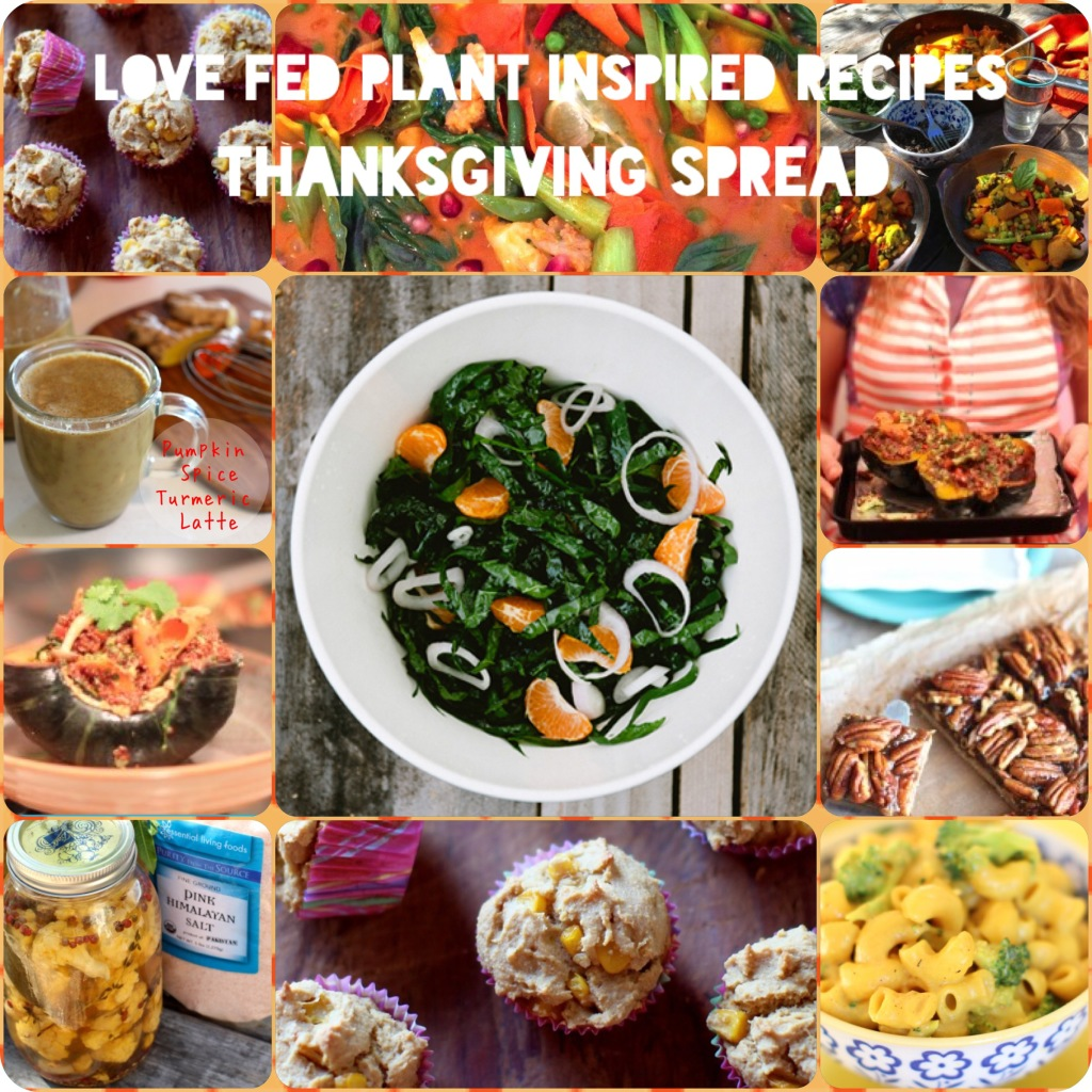 Love Fed Raw, Vegan  & Gluten Free Thanksgiving Menu with Photos & Recipes
